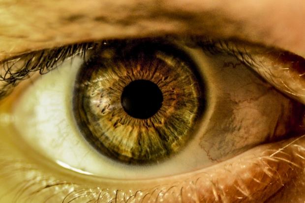 An Eye for an Eye1.jpg